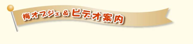梅干見学コースが終わるころ、目前に大きな梅干オブジェが!!