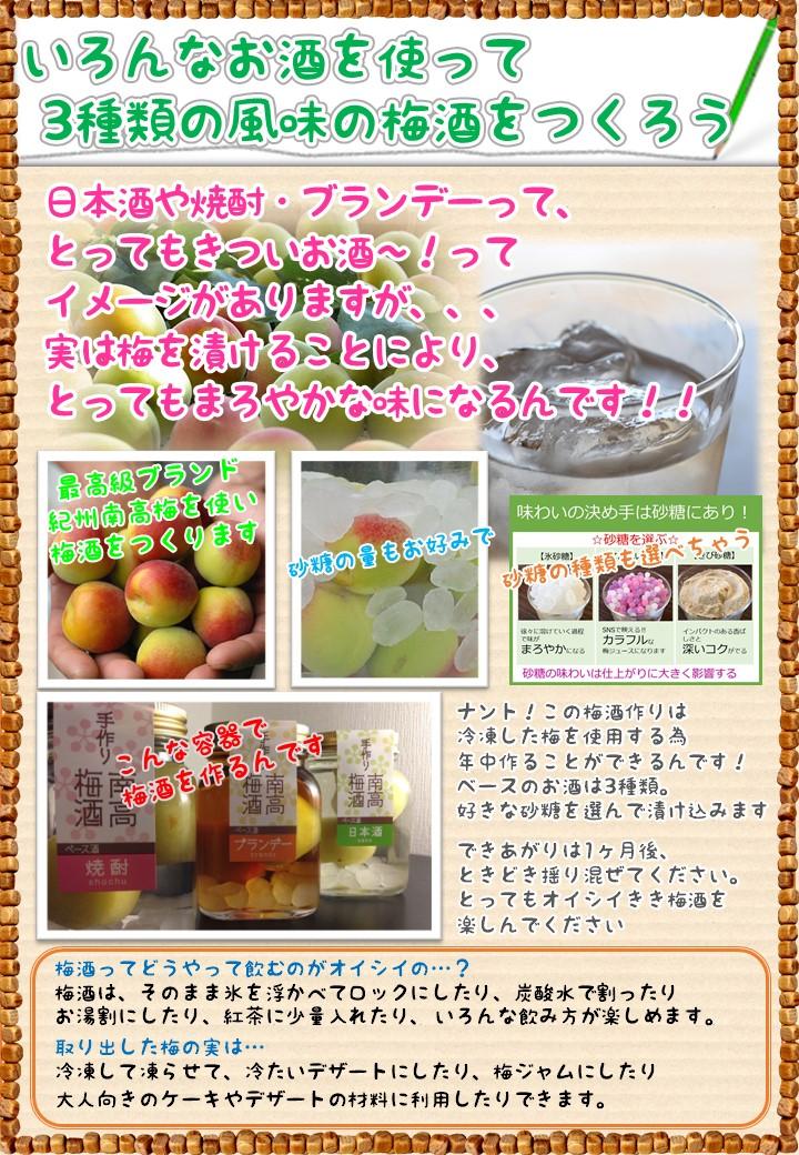 梅酒作り体験♪紀州南高梅を使って、梅酒を作りませんか♪